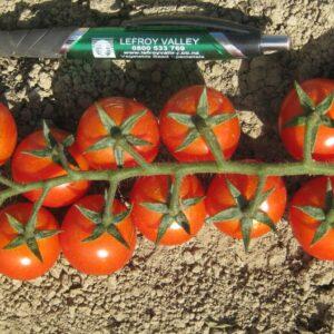 tomato-inferno-1024x529